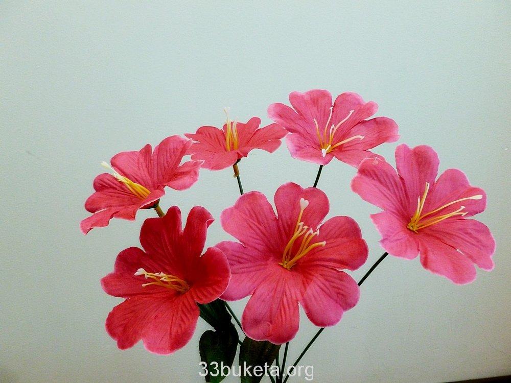 Колокольчик 6 цветков маленький букет