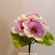 Нарцисс заливка