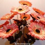 Ромашка цвет. 15 цветков