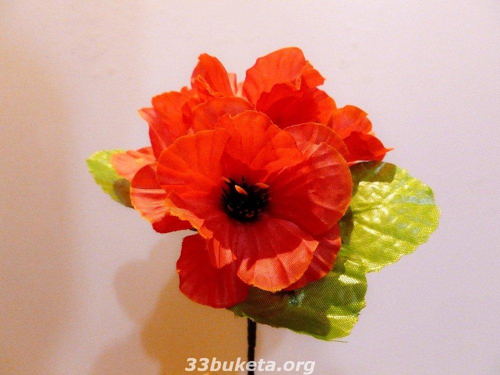Мак цвет. заливка