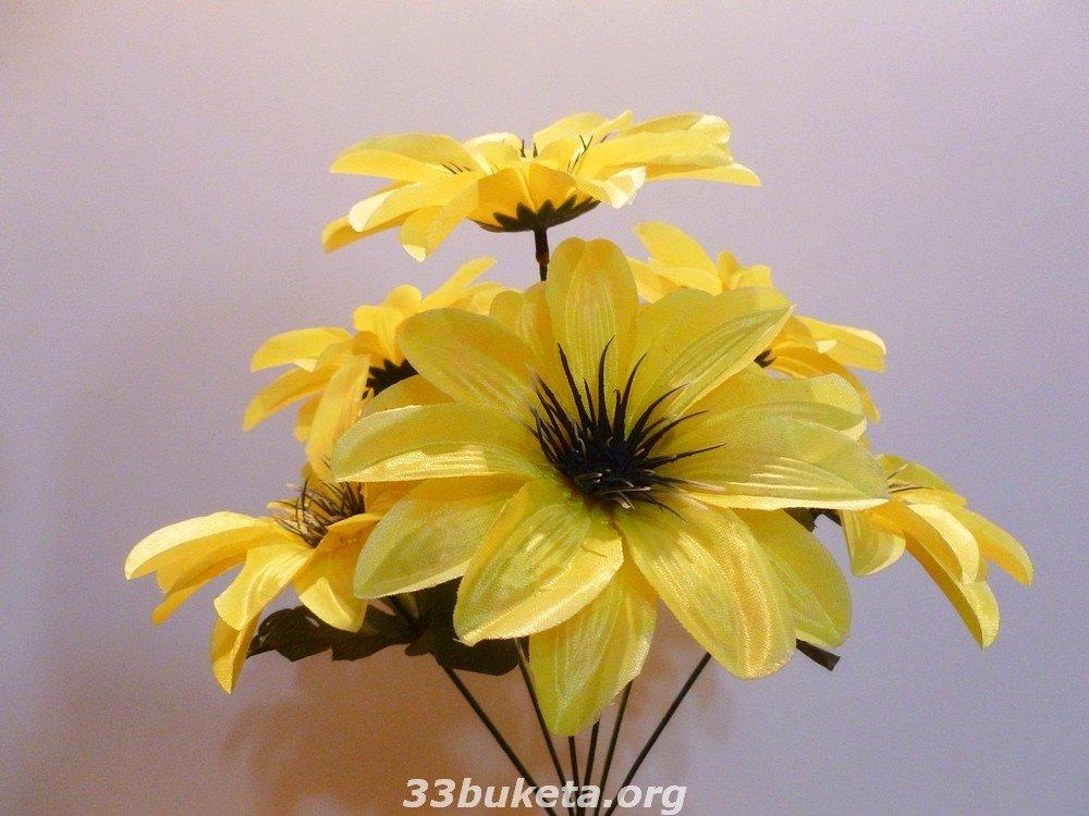 Георгина 6 цветков