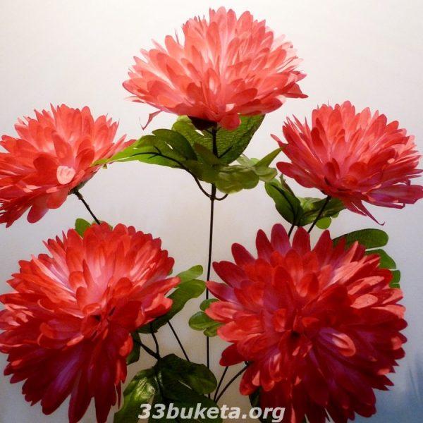 Хризантема 6 цветков
