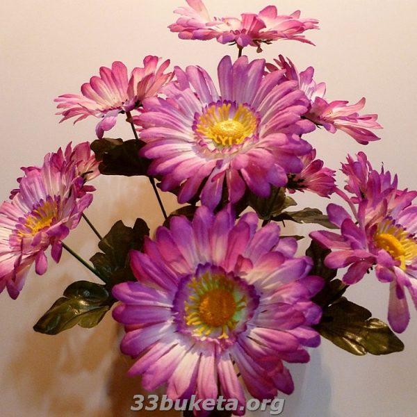 Ромашка цвет. 10голов