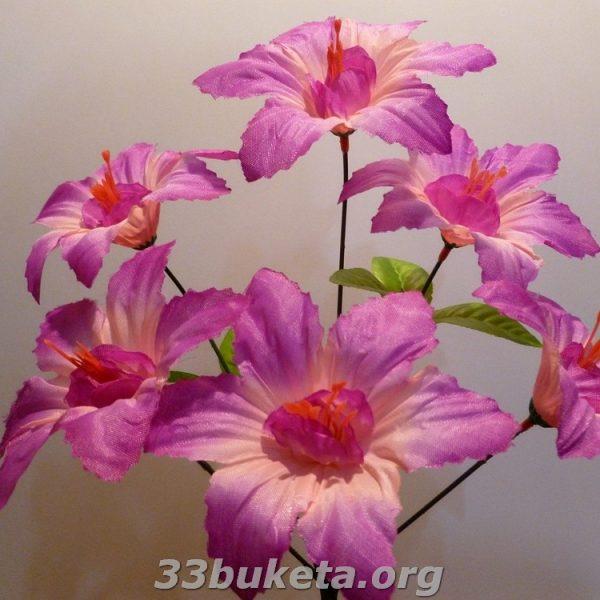Звездочка не прес. 6 цветков