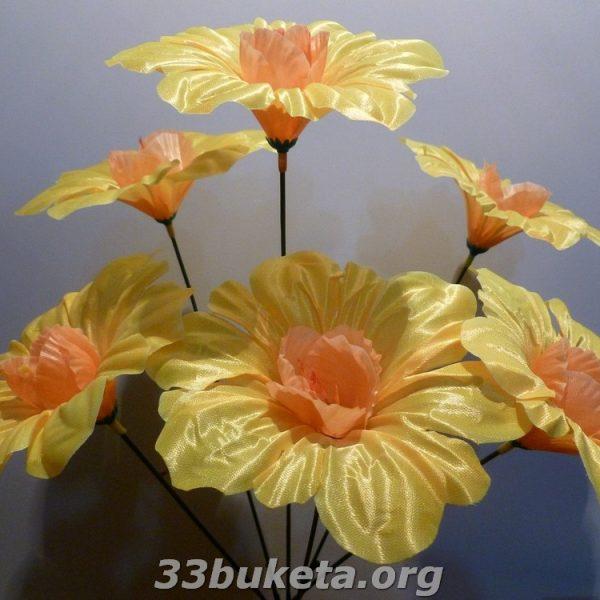 Нарцисс атлас не прес. 6 цветков
