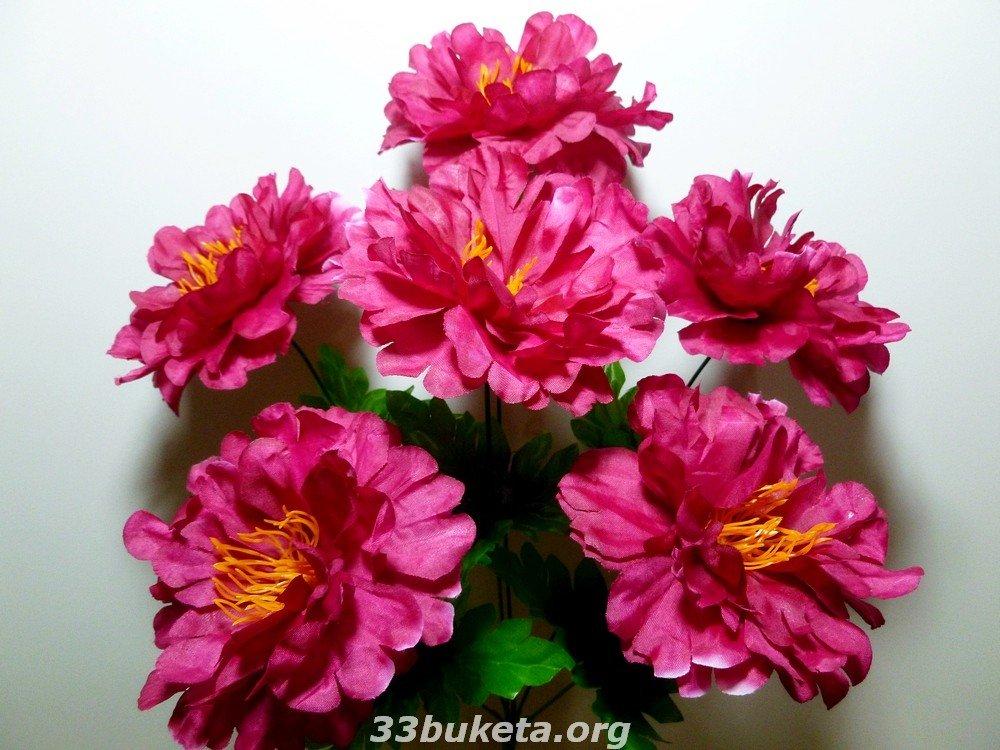 Пион Г-195 6 цветков