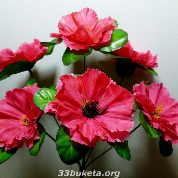 Мальва Г -199 6 цветков