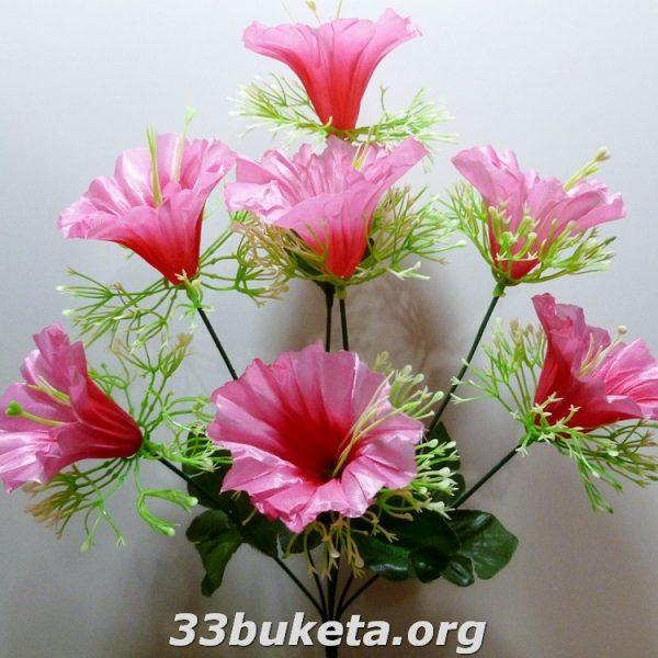 Вьюнок 7 цветков