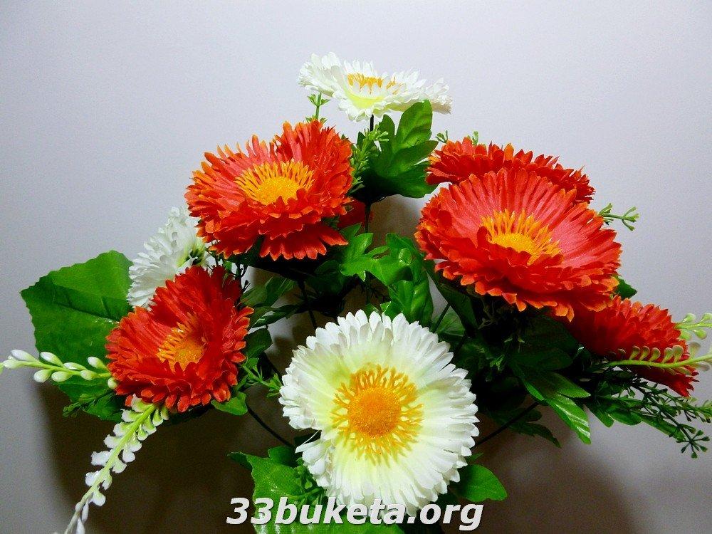 Маргаритка 2-х цветная 10 цветков средний букет