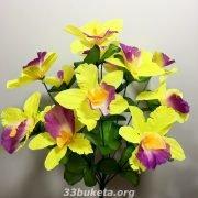Орхидея на 12 цветков средний букет