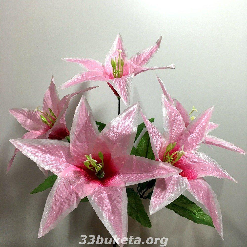 Лилия атлас 5 цветков
