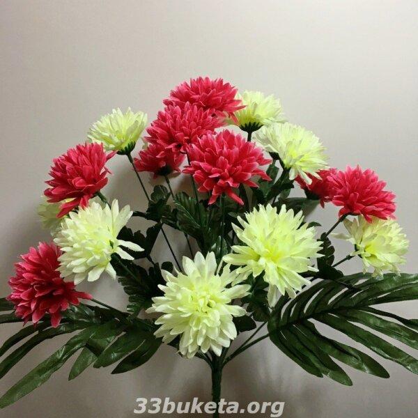 Хризантема 2-х цветная 19 цветков