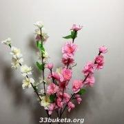 Сакура ветка
