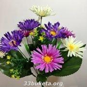 Астра 3-х цвет. 10голов