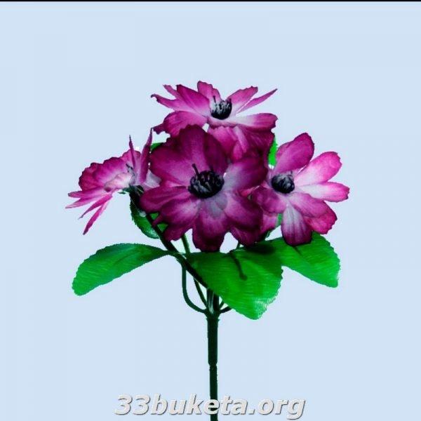 Василек бордюрный цветок