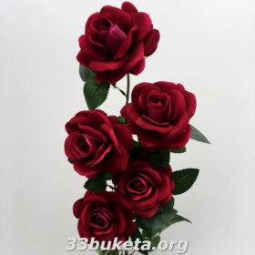 Роза бархат