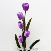 Тюльпан ветка