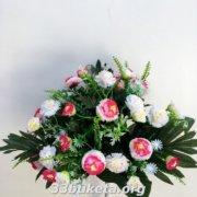 Хризантема с бутоном