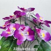 Орхидея 9 голов
