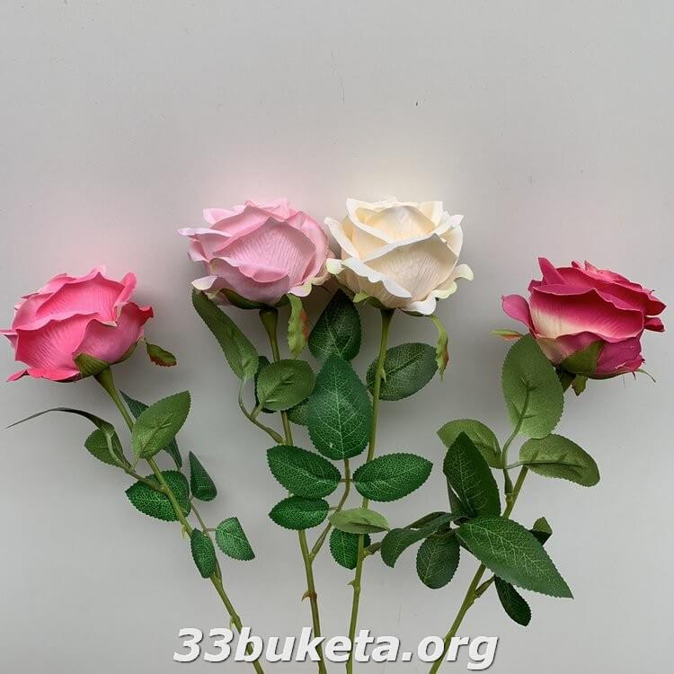 Роза одиночная