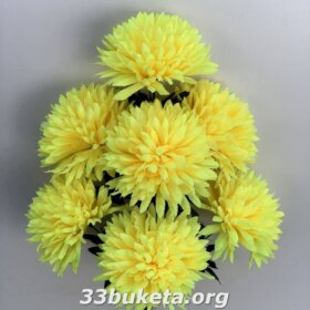 Хризантема гигант