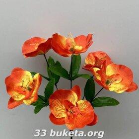 Орхидея атлас